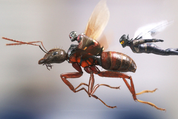 Ant Man And The Wasp. Flying High And Getting It Right.